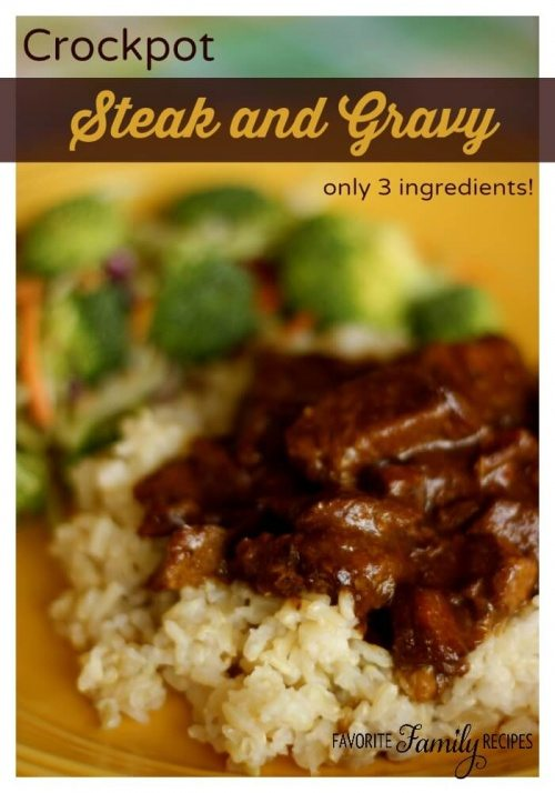 Crockpot Steak and Gravy Slow Cooker