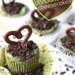 Mini Grasshopper Cheesecakes