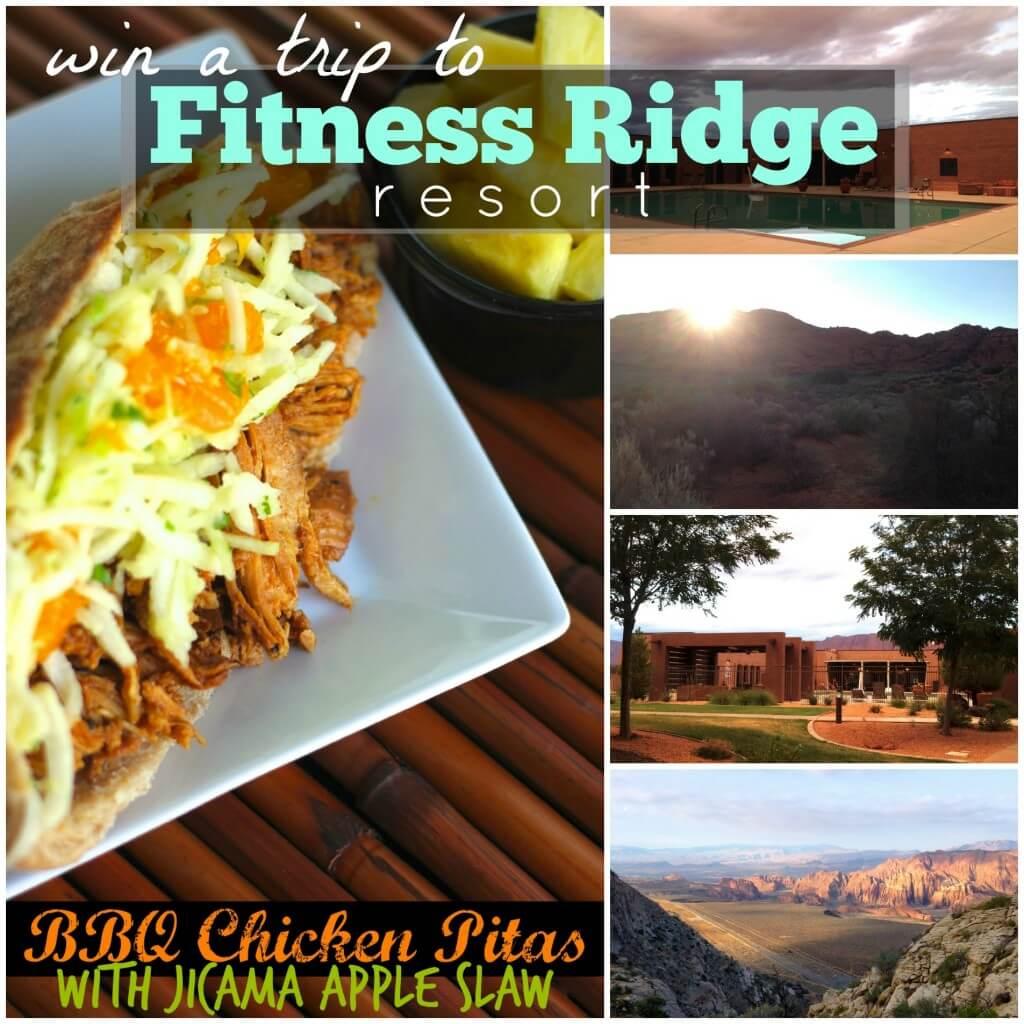 Insta Fitness Ridge
