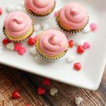 Nutella Swirl Mini Cupcakes with Raspberry Cream Frosting