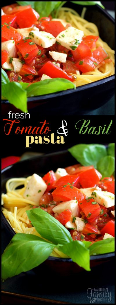 This Fresh Tomato and Basil Pasta is an all time favorite dish in our family. We eat this all summer long when we have ripe tomatoes from the garden.