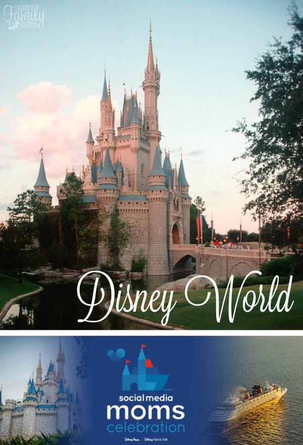 Disney World DSMMC