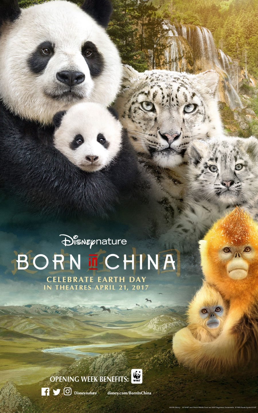 Born in China – Disney Nature – Movie Review