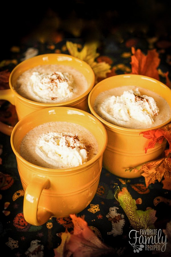 These Pumpkin Steamers will warm you on a cold, autumn day. The drink is rich and creamy with flavors of pumpkin, cinnamon, nutmeg, and ginger.