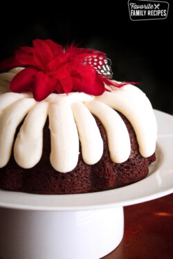 Chocolate Chip Nothing Bundt Cake on a Serving Plate