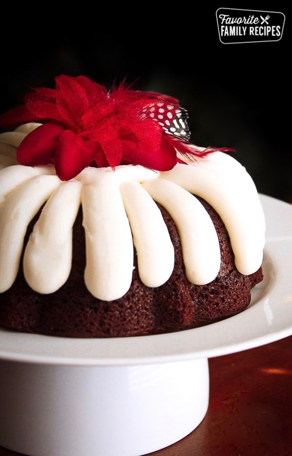 Chocolate Chocolate Chip Nothing Bundt Cake