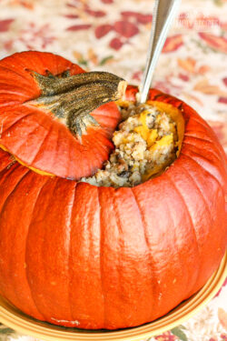 Dinner in a Pumpkin with a spoon coming out.