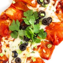 Overhead shot of Easy Cheesy Enchiladas topped with olives and cilantro.