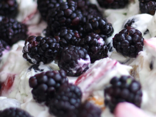 Close up of Blackberry Fruit Salad