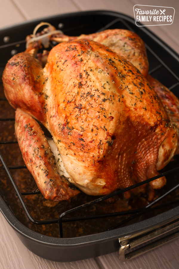A roasted turkey on a wire rack in a roasting pan