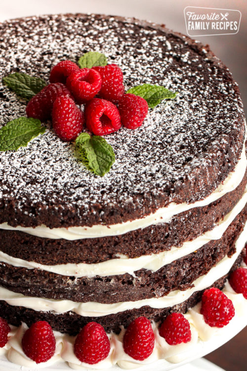 close shot of ridiculously delicious chocolate cake with raspberry garnish