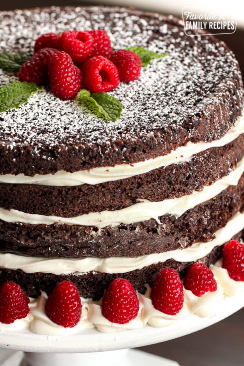 ridiculously delicious chocolate cake with raspberry garnish