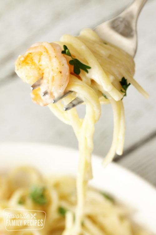 Close up of shrimp Alfredo on a fork