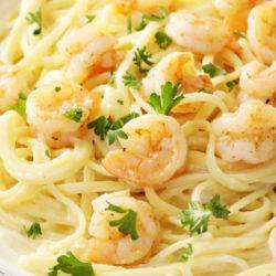Shrimp Alfredo in a pasta bowl