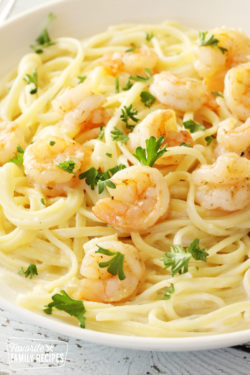 Shrimp Alfredo in a pasta bowl