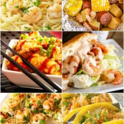 Collage of tasty shrimp recipes