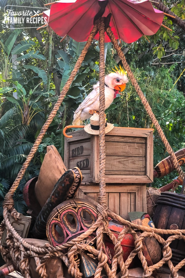 Rosita the Talking Bird in the new Tropical Hideaway at Disneyland