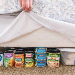 Food storage hidden under a bed