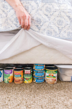Food storage hidden under a bed