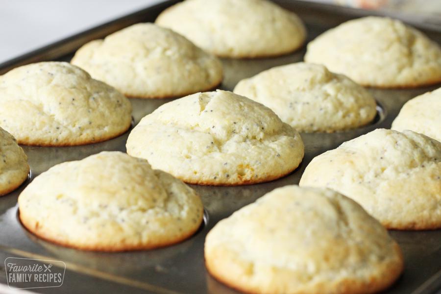 Muffins in a muffin pan