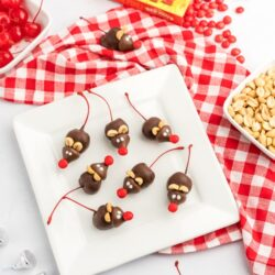 Chocolate cherry mice on a white plate