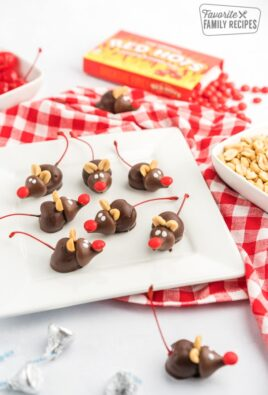 Chocolate cherry mice on a white square plate