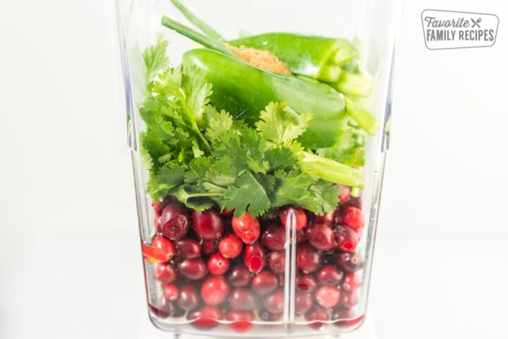 Cranberries, cilantro, jalapeno, green onions, and cumin in a blender