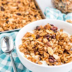 Yogurt and homemade granola in a bowl