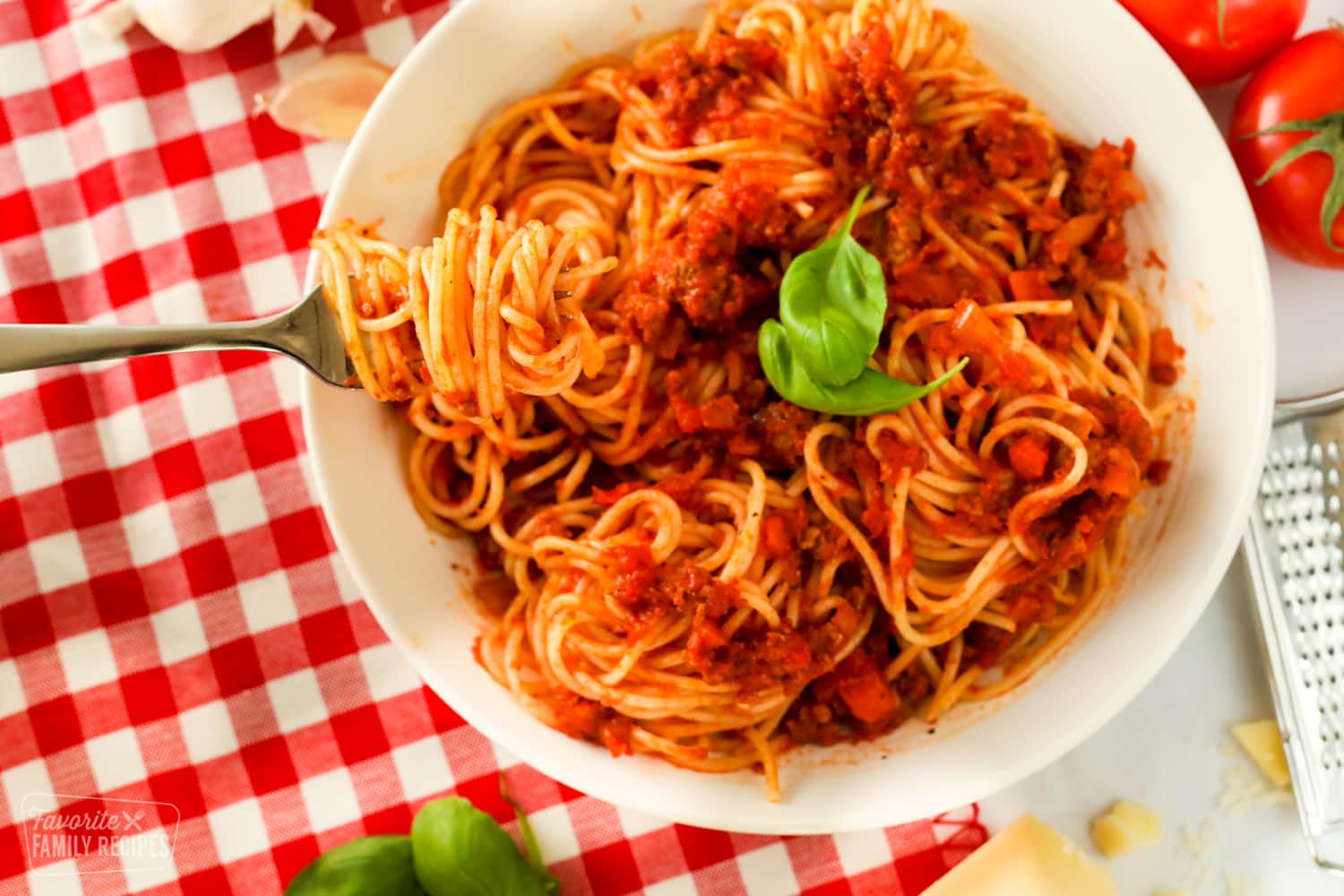 Pasta bowl of spaghetti with a fork