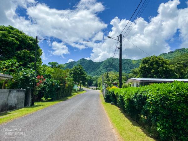 A road on the island of Tahaa, the vanilla island