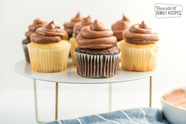 Vanilla and chocolate cupcakes topped with chocolate buttercream frosting